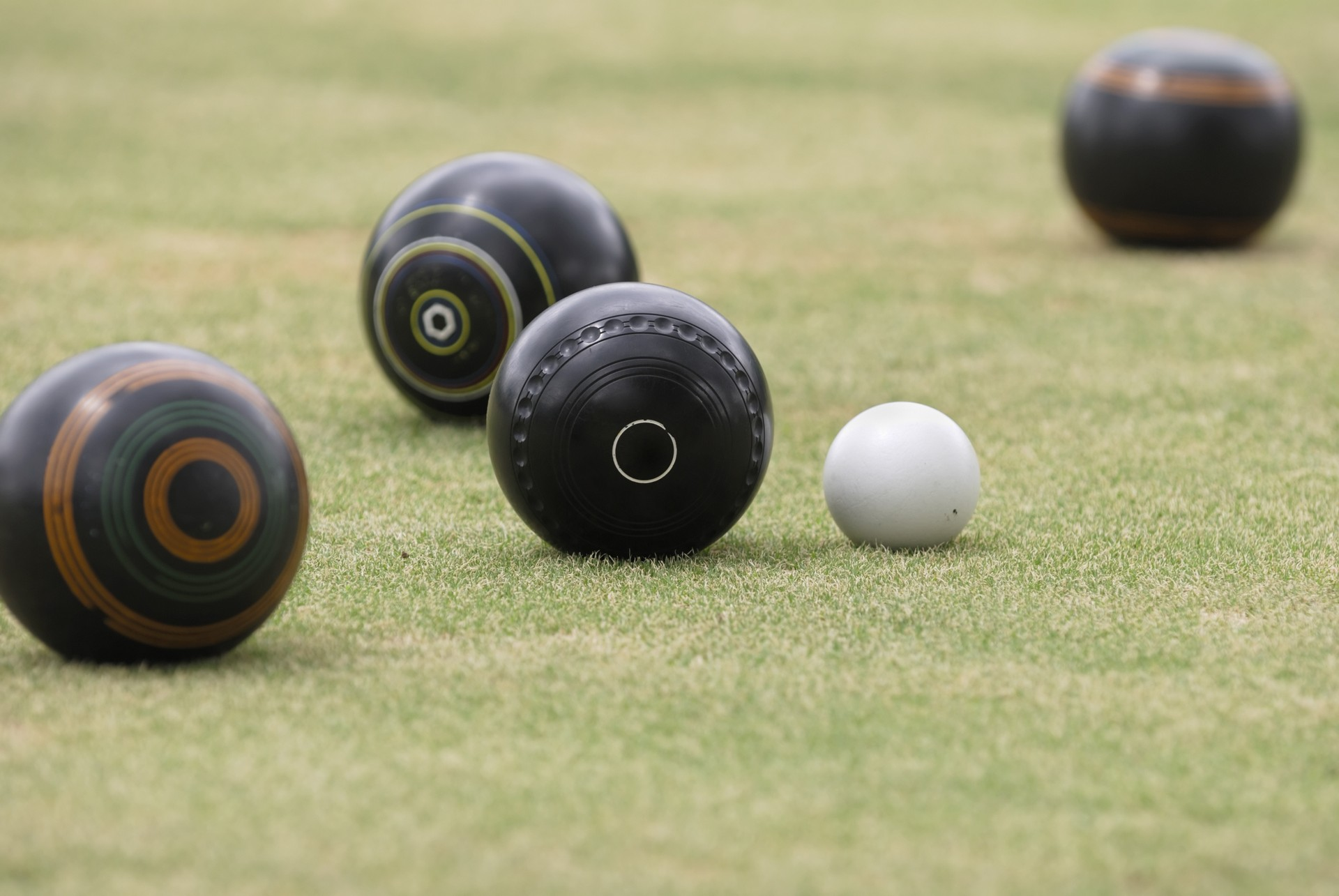 10 Steps To Keep Your Bowling Green Looking Great